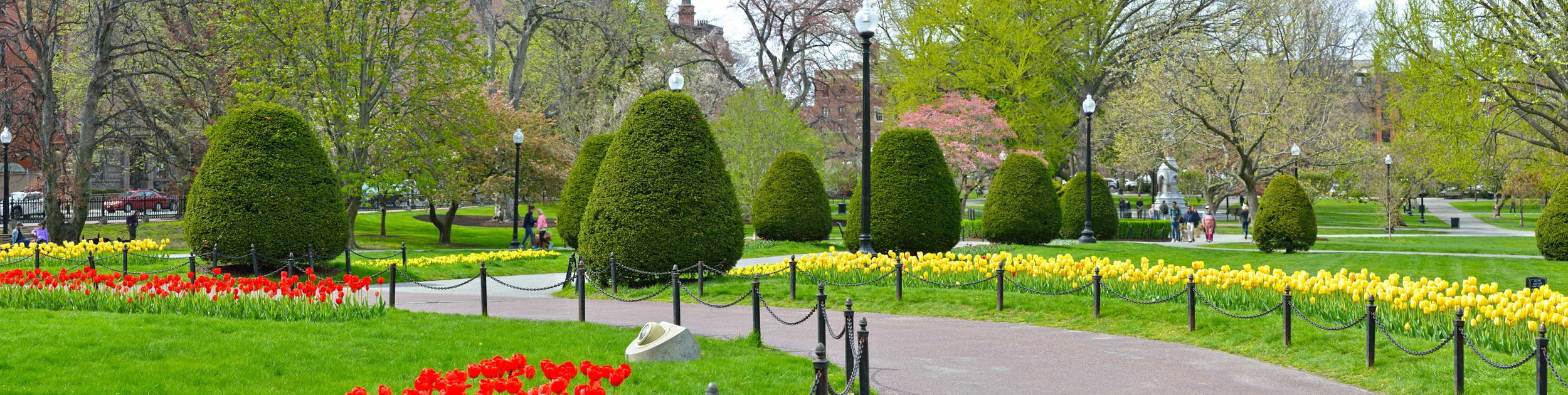 flower garden in Boston showing yellow and red flowers along a walkway