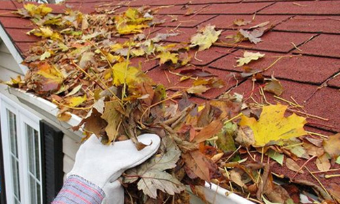 view of hand pulling leaves from gutter