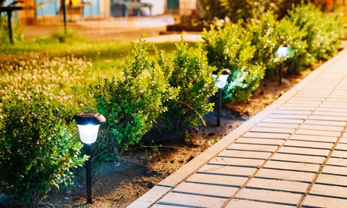 brick walkway shown with landscape lights along the side of it and green plants
