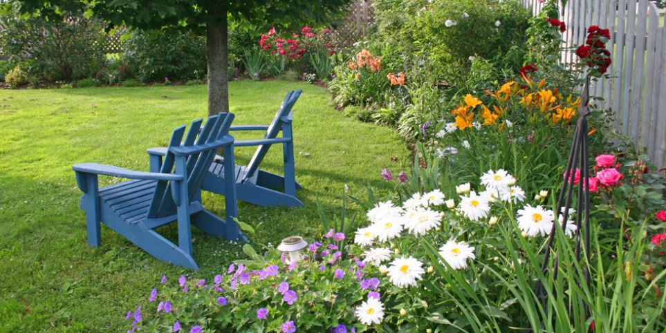 back yard with two blue chairs and flowers