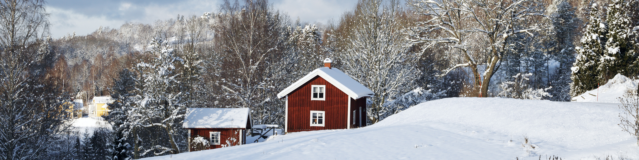 view of snow covered landscape with small red buildings and lots of trees