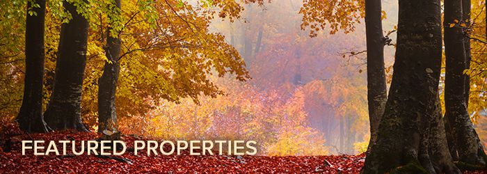 Diana Barone Featured Properties Fall 2017