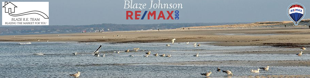 Blaze Johnson REMAX 360