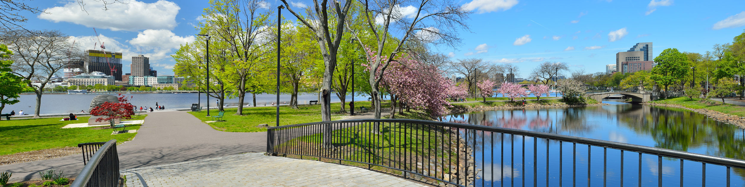 walking path along the Charles River with spring blooming and the Boston skyline in the background