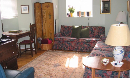 two bedroom apartment for rent in Boston, MA - view of fully furnished living room with area rug