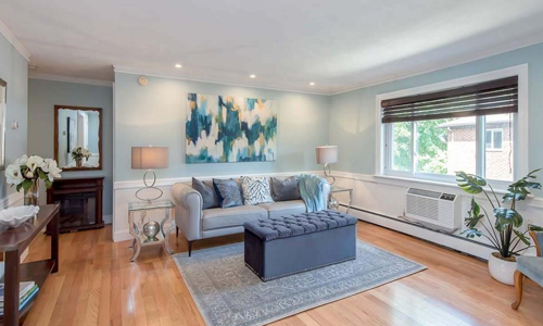 two bedroom condo for sale in Boston, MA - view of fully furnished living room with area rug