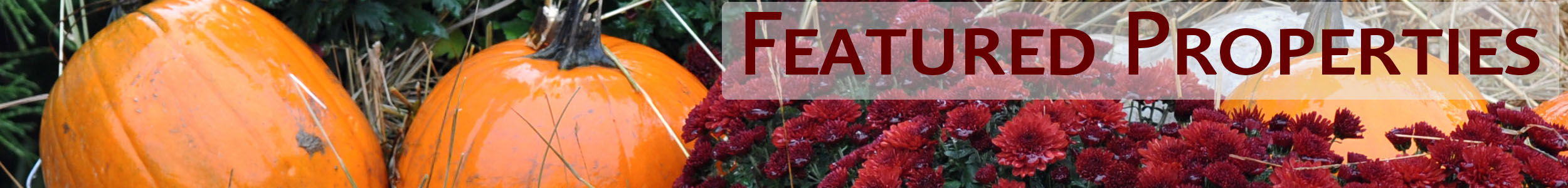 Pumpkins and mums with the words Featured Properties